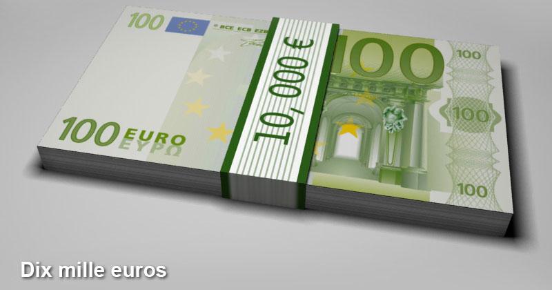 La grande fumisterie la ruine de la france par l 39 umps - Que faire avec 100 000 euros ...